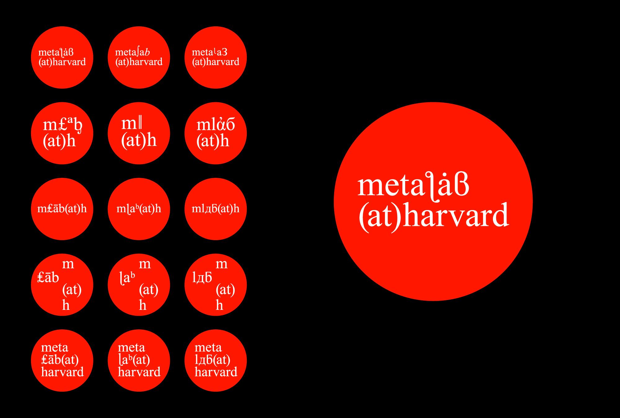 2016_MetaLabProject_VisualIdentity